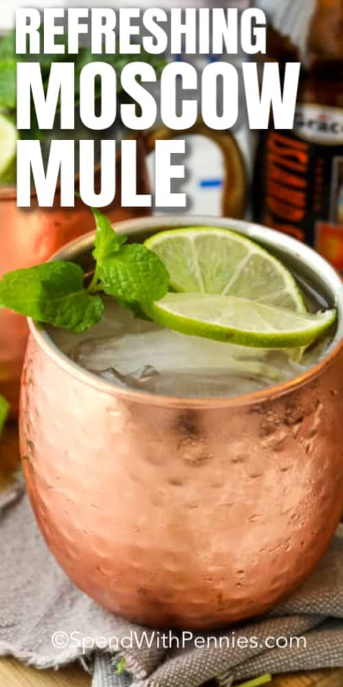 A Moscow Mule in a copper mug with a title.