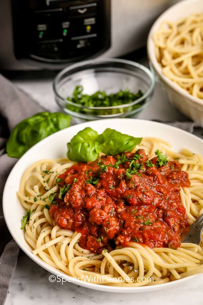 Spaghetti sauce served on spaghetti with basil and parsley