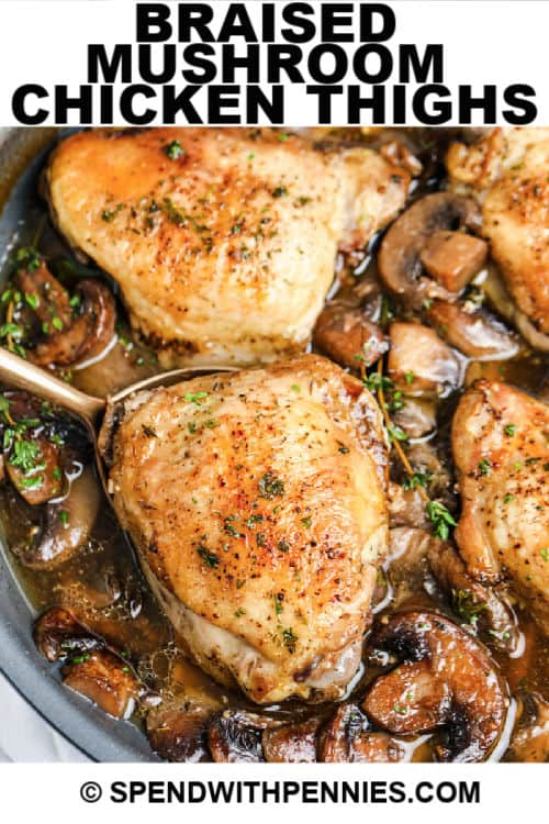 Braised Mushroom Chicken Thighs close up with writing