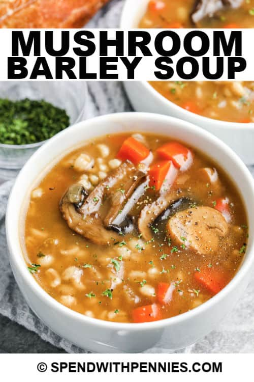 Mushroom Barley Soup in a bowl with writing