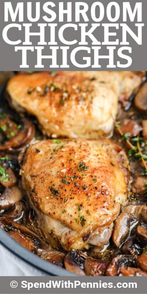 Braised Mushroom Chicken Thighs in pan close up with writing