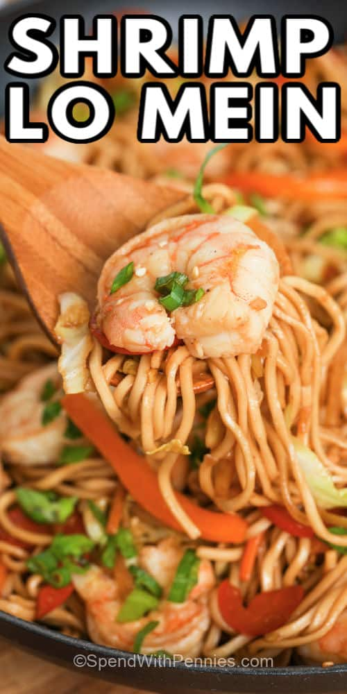 spoonful of Shrimp Lo Mein with a title