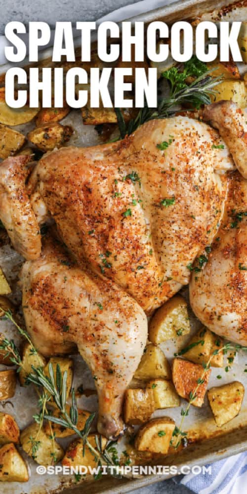 close up of Spatchcock Chicken with a title