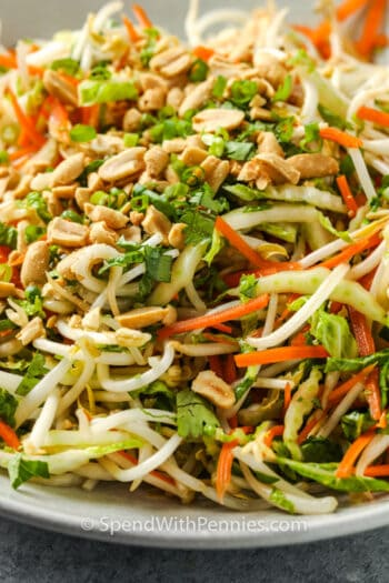 close up of Bean Sprout Salad with peanuts