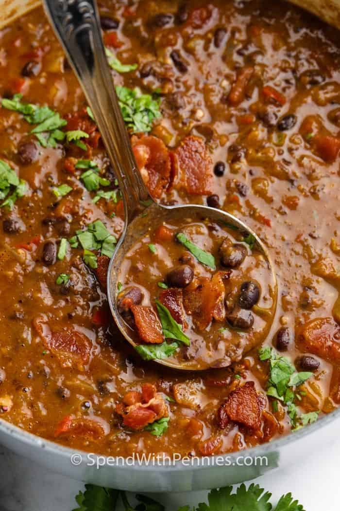 Black Bean Soup in a pot with a spoonful in a laddle