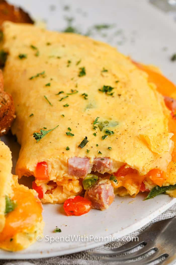 close up of a Denver Omelette