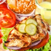 close up of Grilled Chicken Sandwich