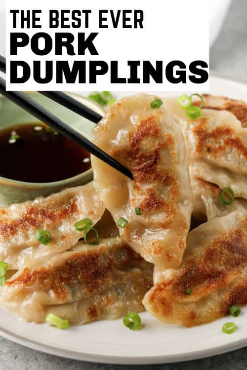 Pork Dumplings with writing