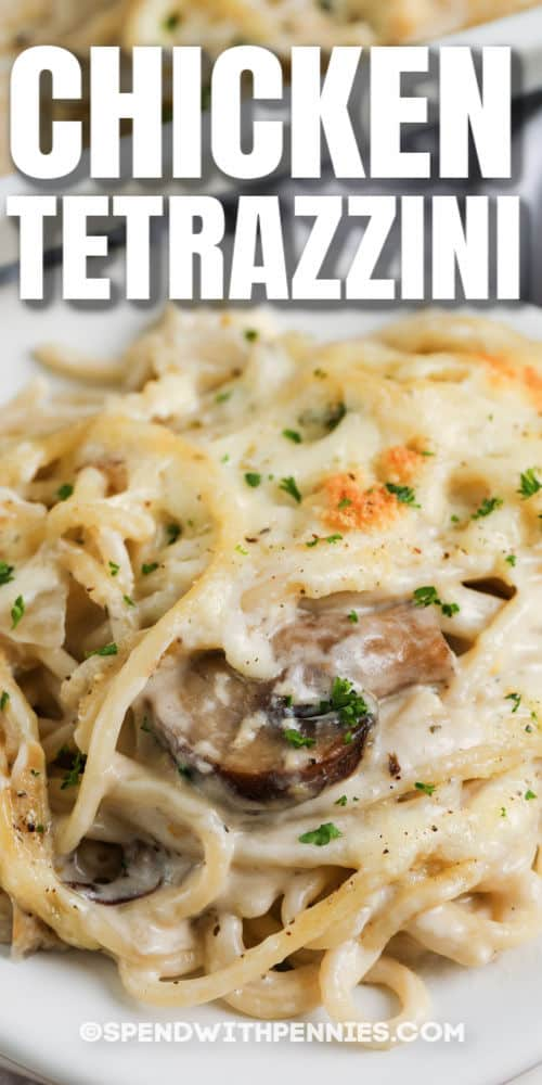 Chicken Tetrazzini on a white plate with a title