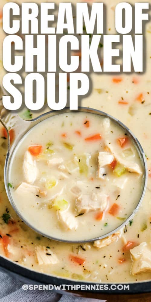 laddle of Cream of Chicken Soup with writing