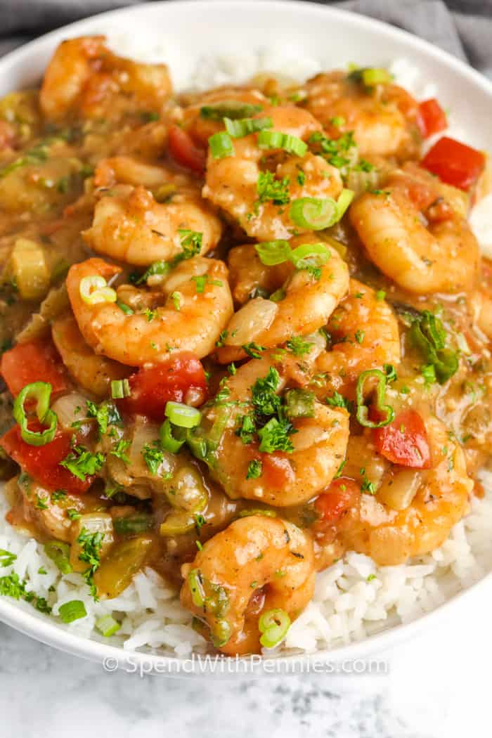 Shrimp Etouffee on a white plate with rice