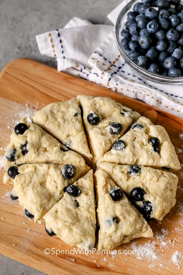 blueberry scone dough in a circle cut into 8 wedges
