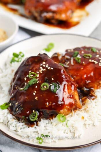 Honey Garlic Chicken on rice