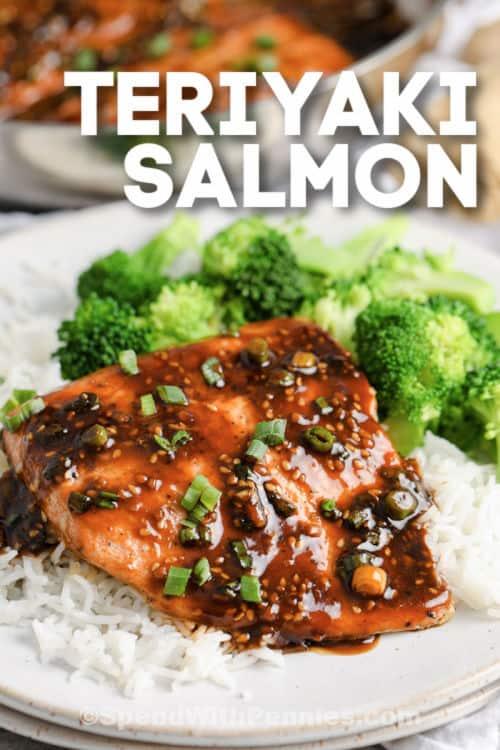 Teriyaki Salmon on a plate with writing