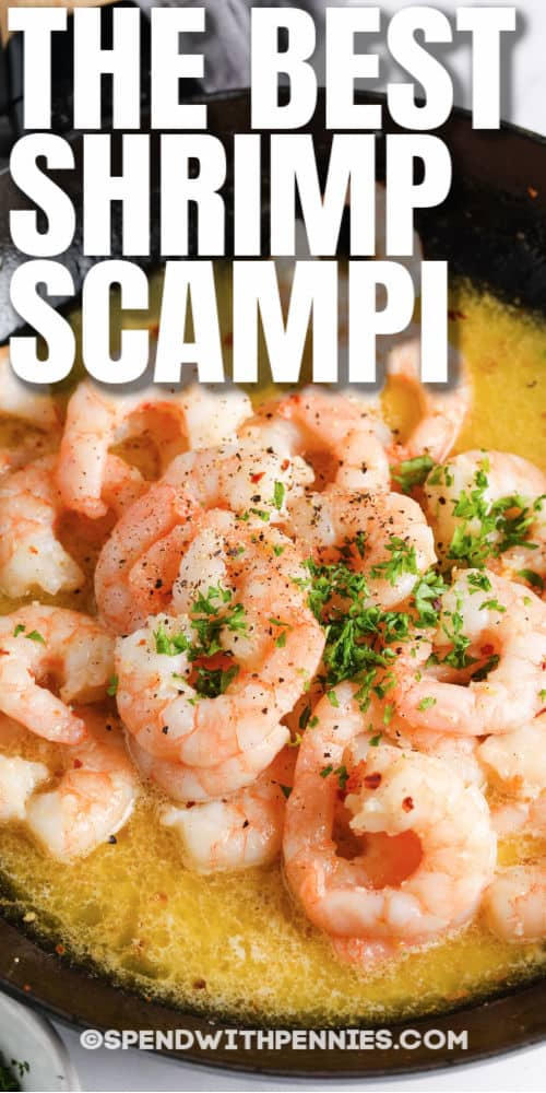 Shrimp Scampi in the pan with writing
