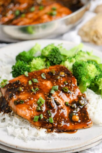 Teriyaki Salmon on a white plate with rice and broccoli