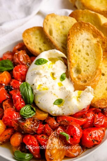 Burrata with Roasted Tomatoes in a white bowl with crostini