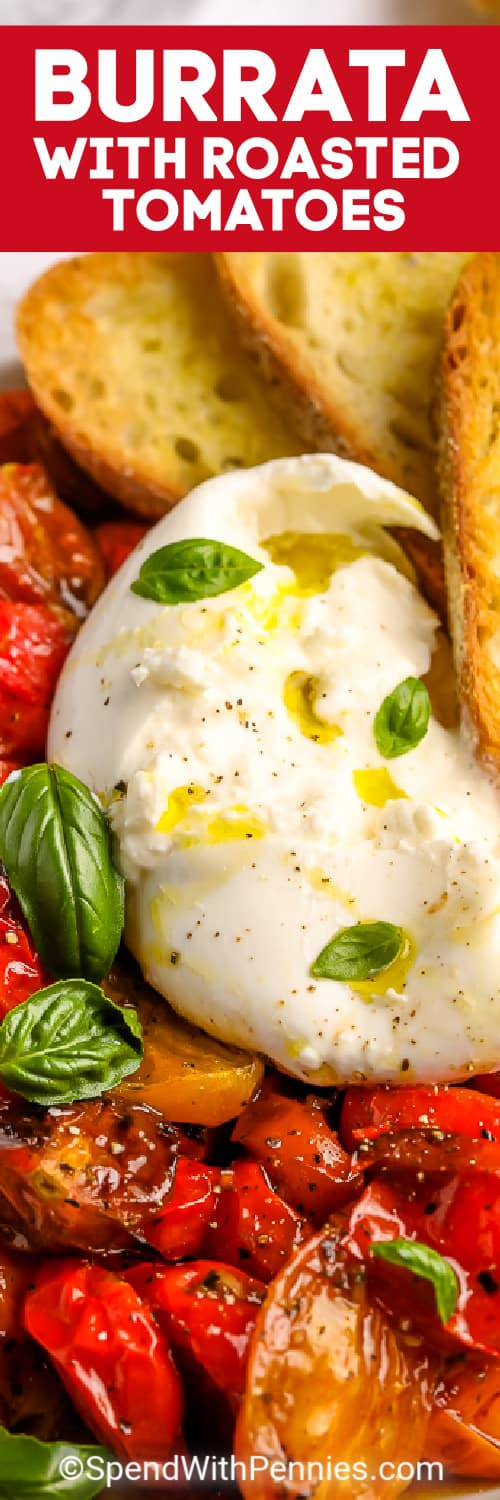 Burrata with Roasted Tomatoes with fresh basil and a title
