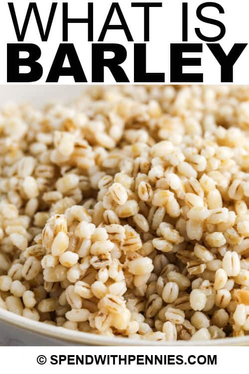 barley in a bowl with writing