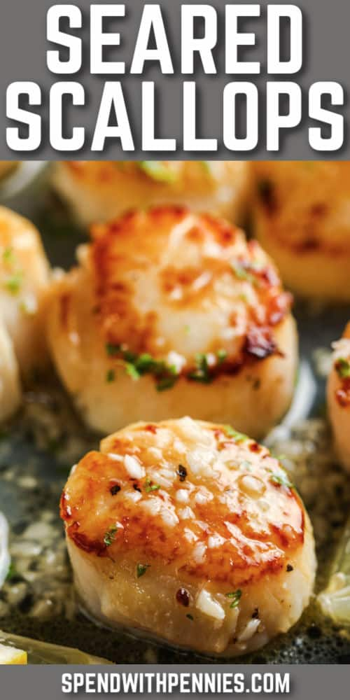 close up of (Simple) Seared Scallops with a title