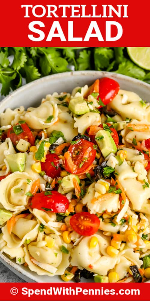 Tortellini Salad in a white bowl with a title