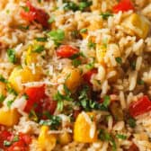 close up of Summer Squash Rice