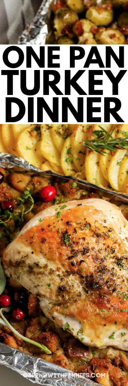 close up of One Pan Turkey Dinner with a title