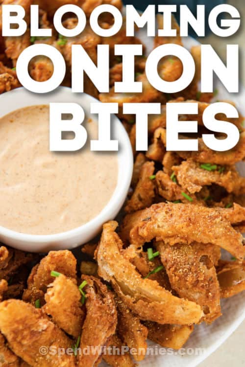 plated Blooming Onion Bites with dip and writing