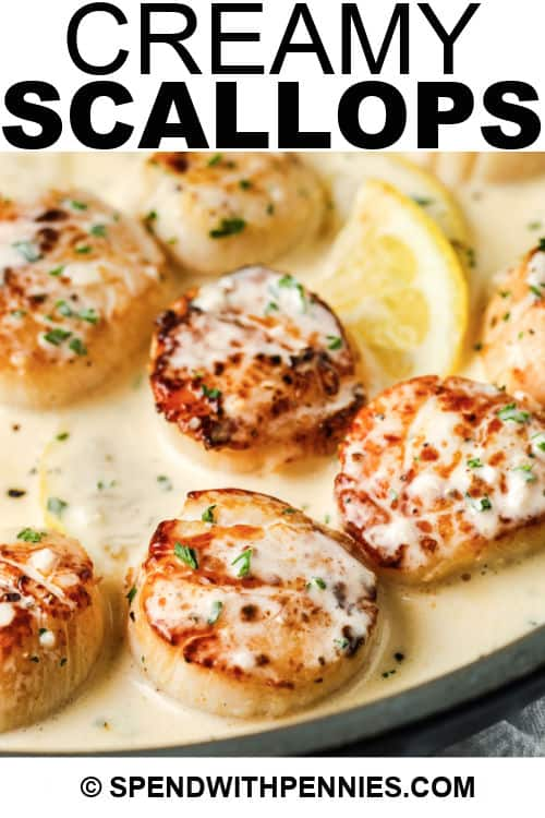 cooking Scallops in Lemon Cream with a title