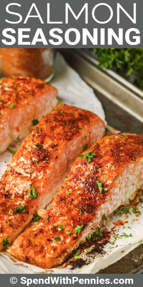 Salmon Seasoning on cooked salmon with a title