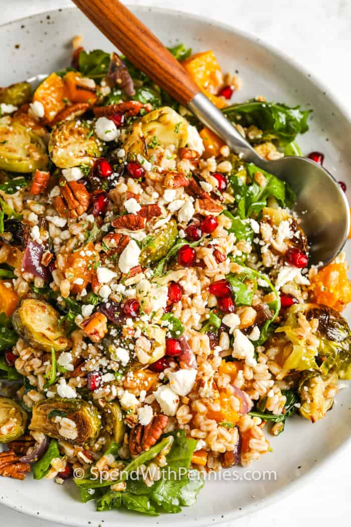 Harvest Farro Salad with a spoon
