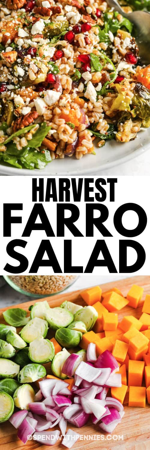 Harvest Farro Salad and cut up vegetables with a title