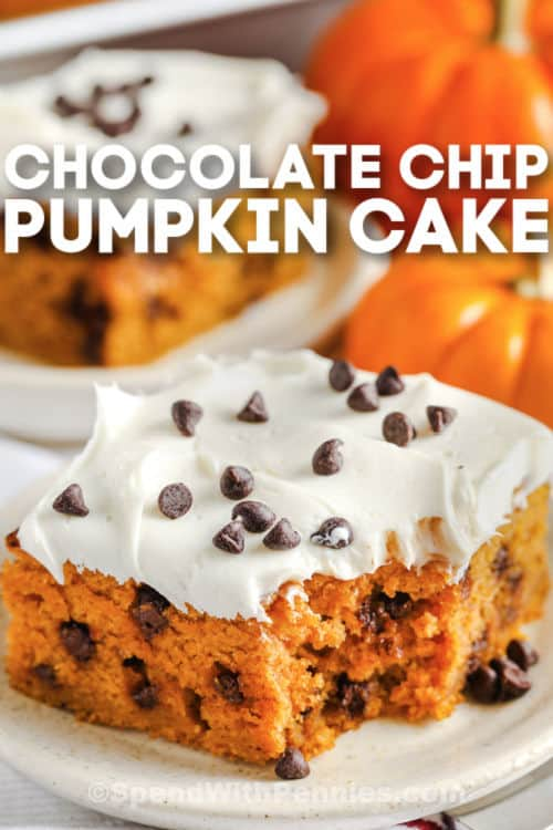slices of Chocolate Chip Pumpkin Cake on a plate with writing