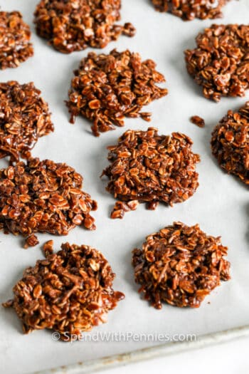 No Bake Chocolate Cookies (Nut Free) on a baking sheet