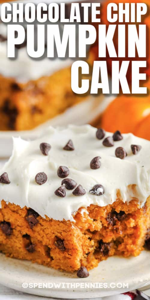 Chocolate Chip Pumpkin Cake with a title