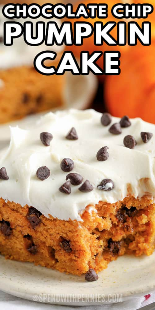 close up of Chocolate Chip Pumpkin Cake on a plate with a title