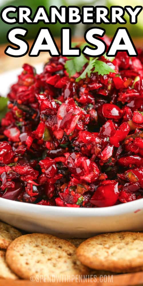 close up of Cranberry Salsa with a title