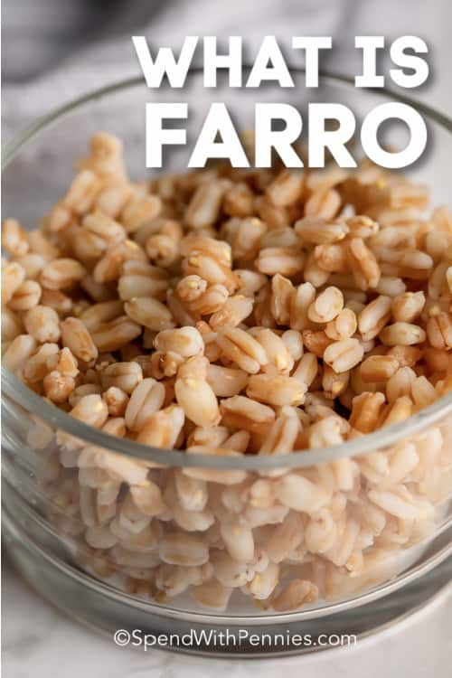 Farro in a bowl with text