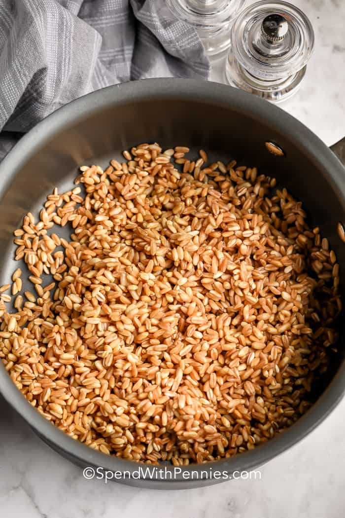 Farro in a pot for What is Farro