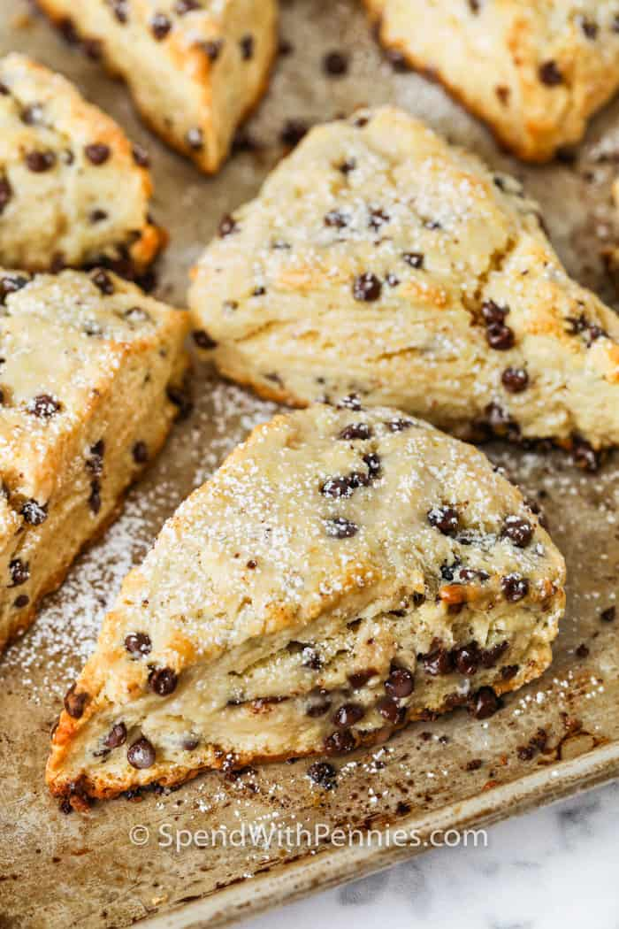 Mini Chocolate Chip Scones on a baking sheet