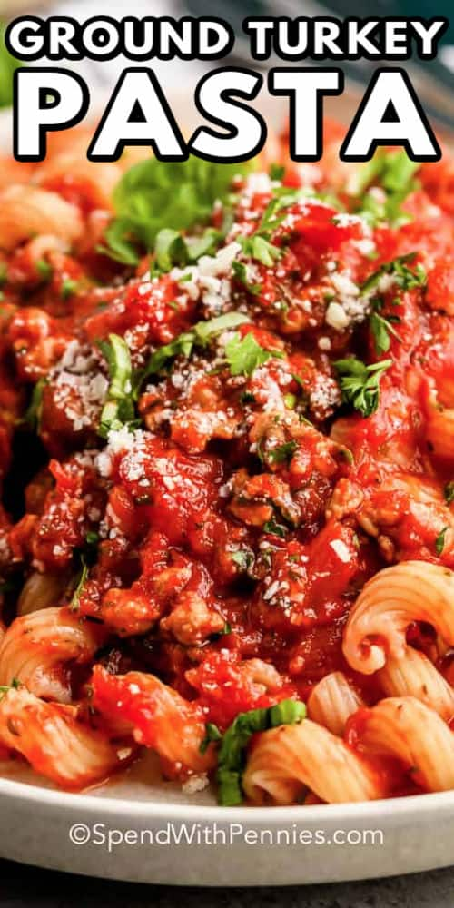 close up of Ground Turkey Pasta Sauce with a title