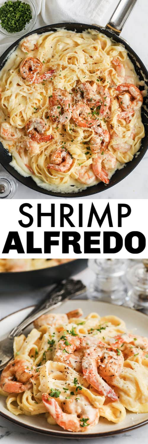 Easy Shrimp Alfredo in the pan and plated with a title