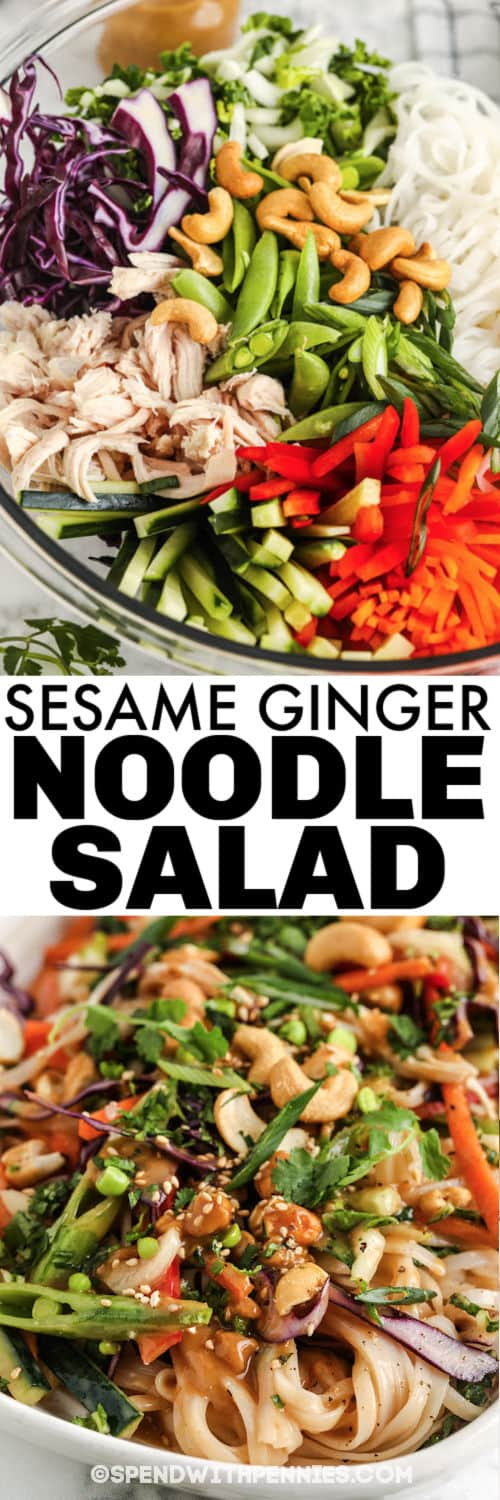 Sesame Ginger Noodle Salad ingredients in a bowl and plated with a title