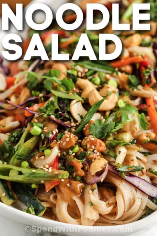 close up of Sesame Ginger Noodle Salad with writing