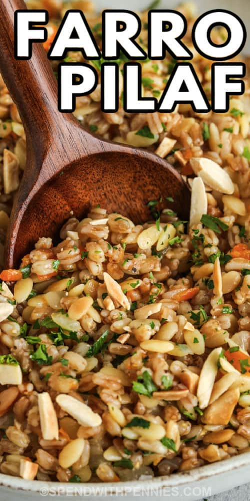 close up of plated Farro Pilaf with writing