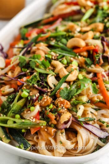 close up of finished Sesame Ginger Noodle Salad