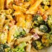 close up of Broccoli Casserole in a decorative casserole dish