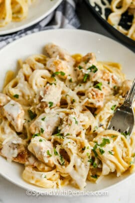 plated Chicken Alfredo with a fork