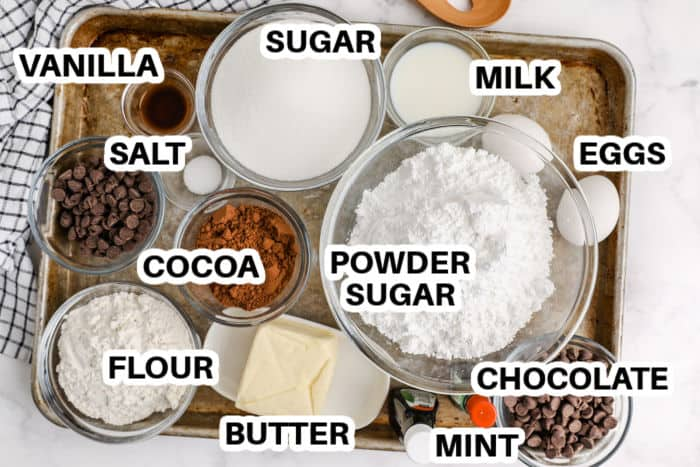 ingredients to make Chocolate Mint Brownies with titles