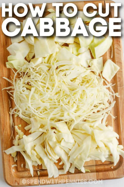cut cabbage to show How to Cut Cabbage with writing